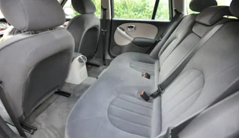 We clean all cloth car seats and do our best to vaccum pet hair.